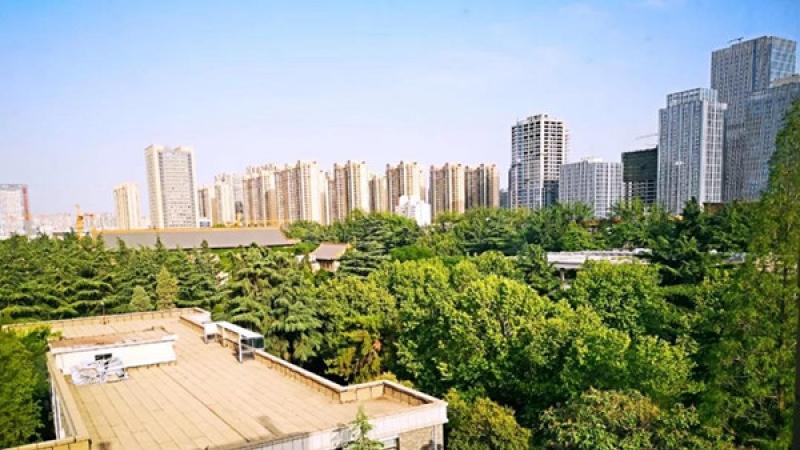 """我在陕西""""森林""""大学被绿了!"""