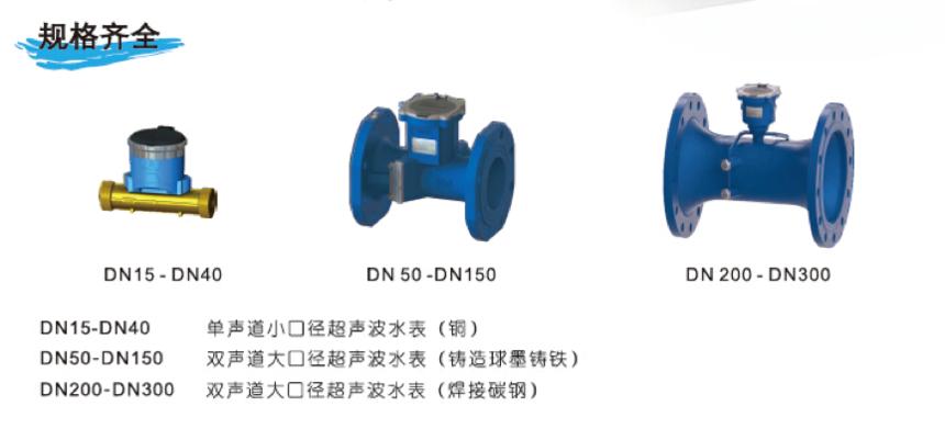 TDS-100系列双声道超声波水表价格表