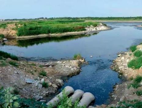 養殖汙水橫流