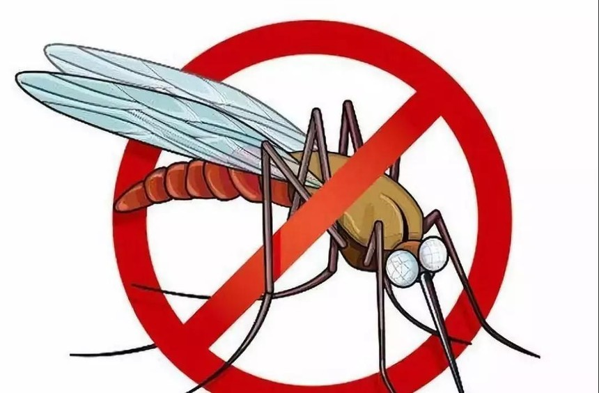 防蚊图片.jpg