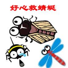 好心救蜻蜓.jpg