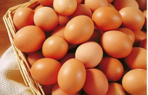 蛋鸡保肝排毒就用龙昌胆汁酸