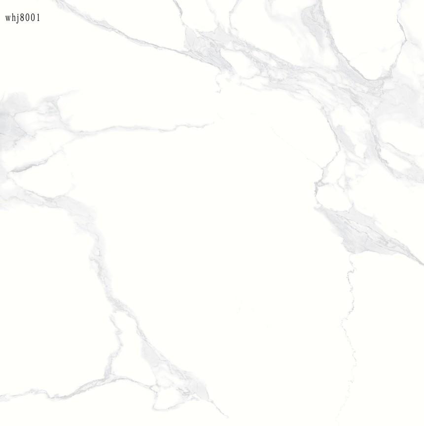 WHJ8001.jpg