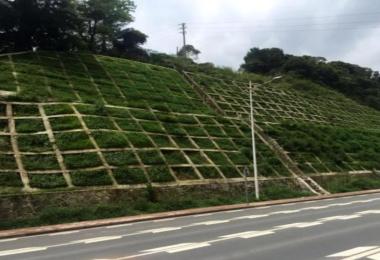 云贵线(云南段)绿化防护工程