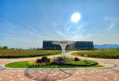 深圳国际生物谷坝光核心启动区生态修复