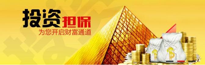 杭州担保公司转让