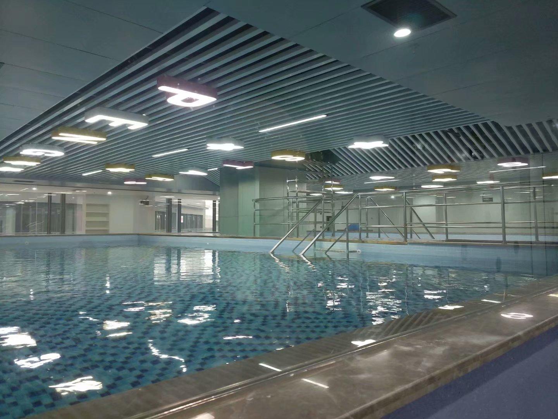 泳池水循环方式