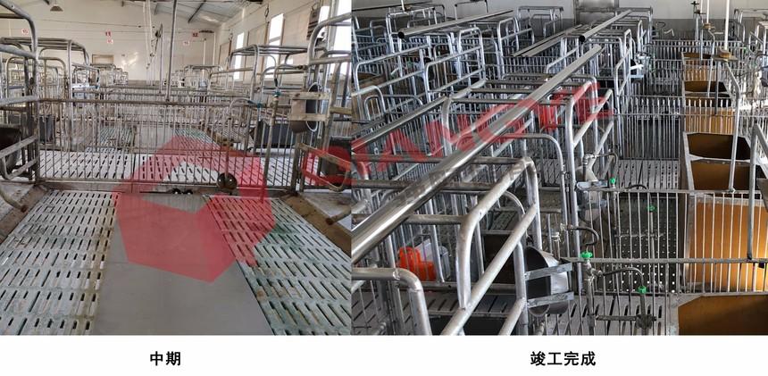 扬州养殖项目.jpg