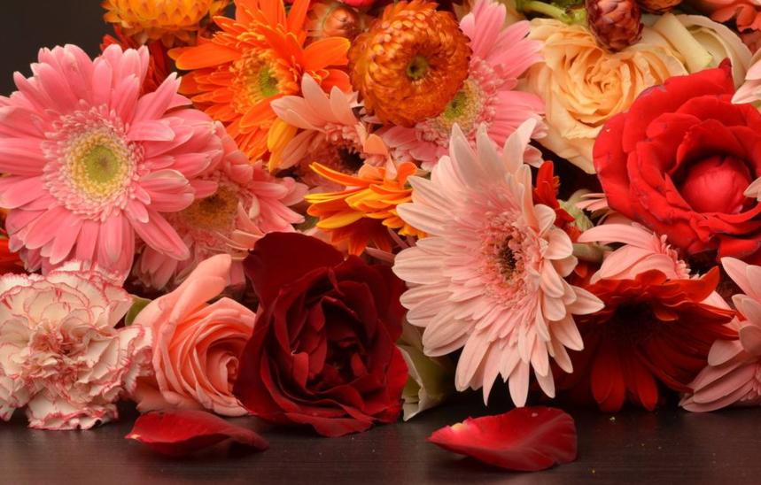 花卉的作用有哪些?