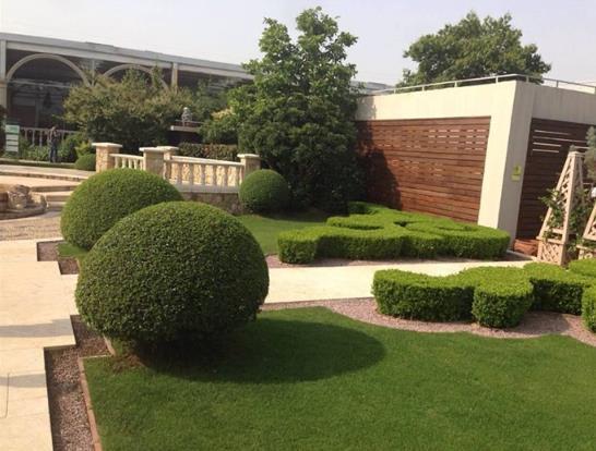 杭州绿化施工