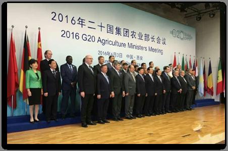 2016年二十国农业部长会议