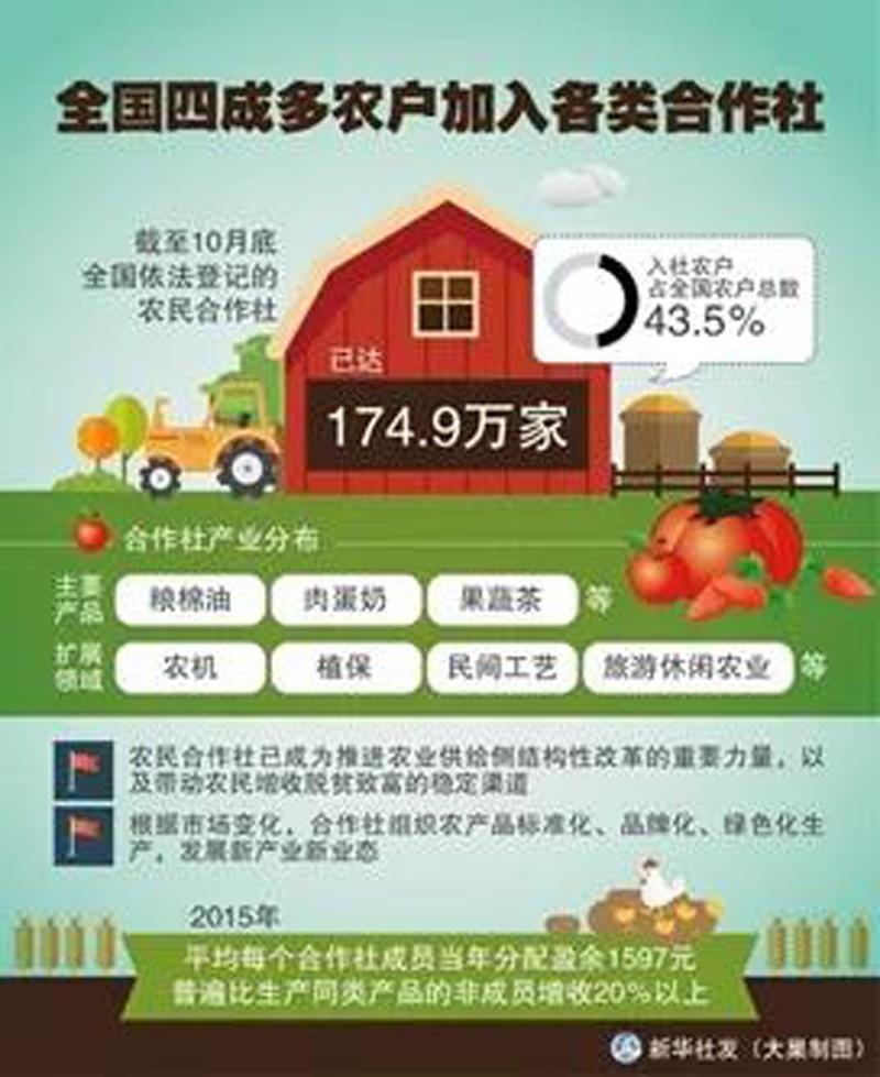 """绿色农业:以""""企社加盟""""助力乡村绿色农业产业振兴"""