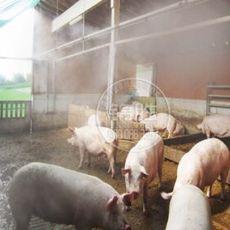 养殖场—消毒除臭