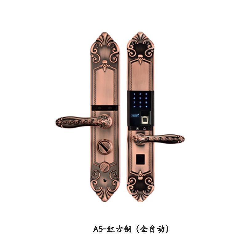 2 A5-红古铜(全自动).jpg