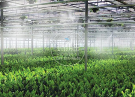 温室大棚基地—水雾加湿