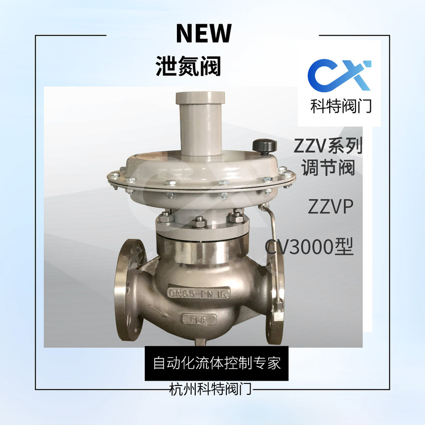 泄氮阀CV3000.jpg