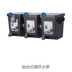 杭州锦鲤鱼池过滤系统