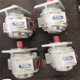 供应黑龙江齐哈尔市 四川长江液压齿轮泵修理专业厂家