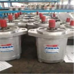 四川长江液压CBK1008-B1FL长江液压齿轮泵