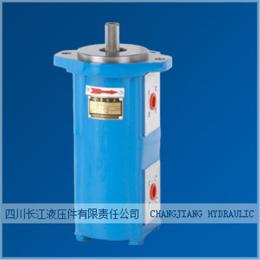 CBK1025/8-B4FL 长江液压泵 煤机副泵双联齿轮泵