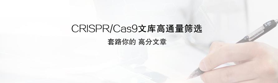 CRISPR_Cas9文库高通量筛选