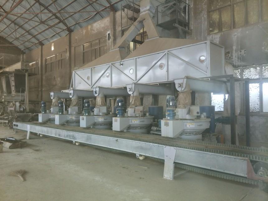 湖北时产10吨生产线.jpg