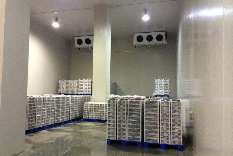 2000平米冷库建造