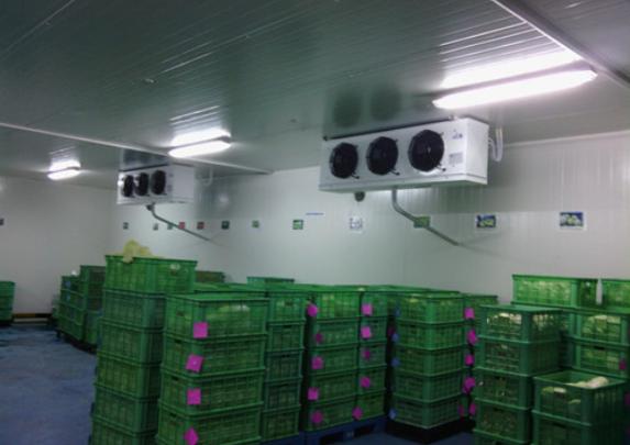 杭州蔬菜冷库建造