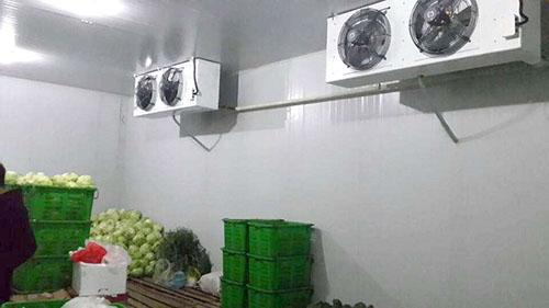 蔬菜冷库.jpg