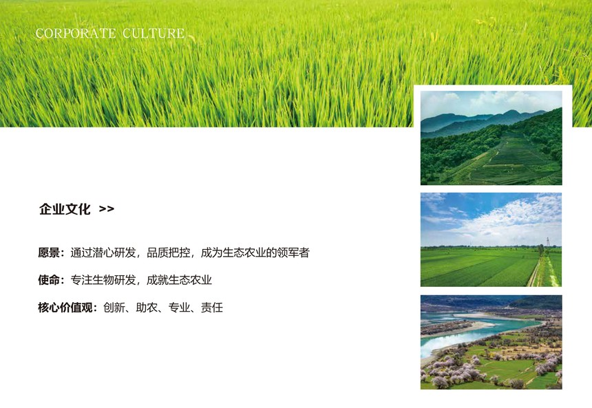 576x216沪生农业画册1预览-4.jpg