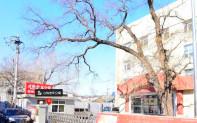 东城区心怡老年公寓—东城区东四十三条老年