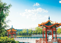北京市朝阳区将府庄园敬老院—朝阳区酒仙桥