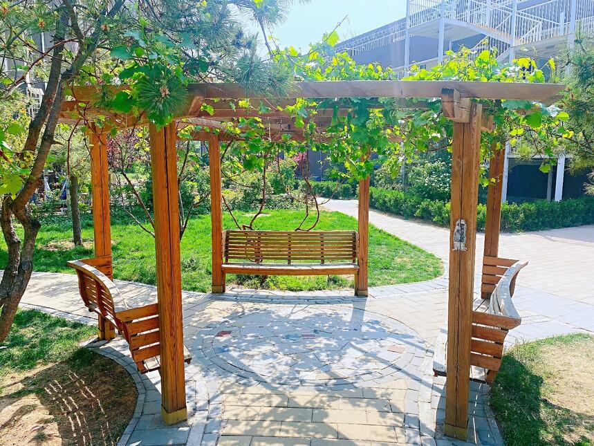 北京市丰台区养老院花园