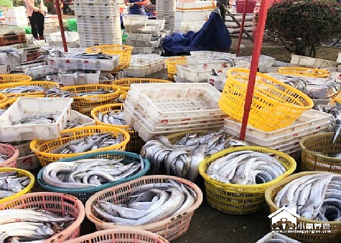 海南省三亚市包吃包住养老公寓