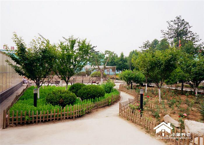 北京市大兴区2000-5000元养老院