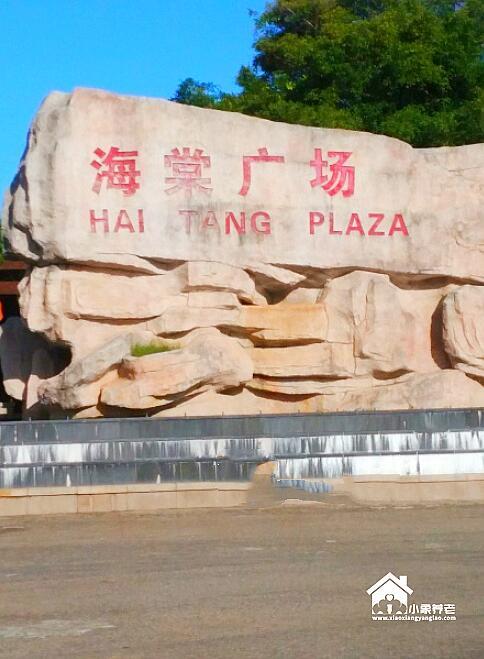 海南省三亚市海棠区旅居养老公寓