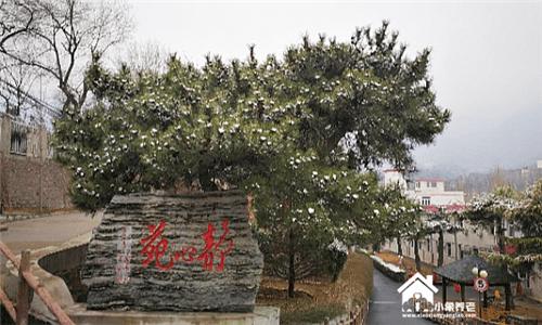 北京市海淀区四季青乡香山新营养老院1560-5000元