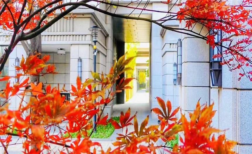 北京环境最好的养老院