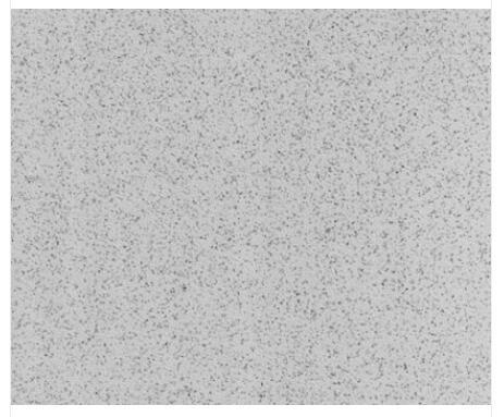 金钢砂系列722-582.jpg