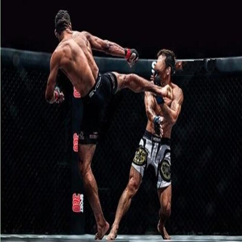 MMA综合格斗.jpg
