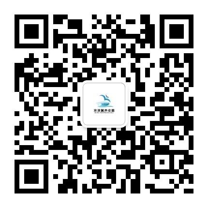 1604039807427826.jpg