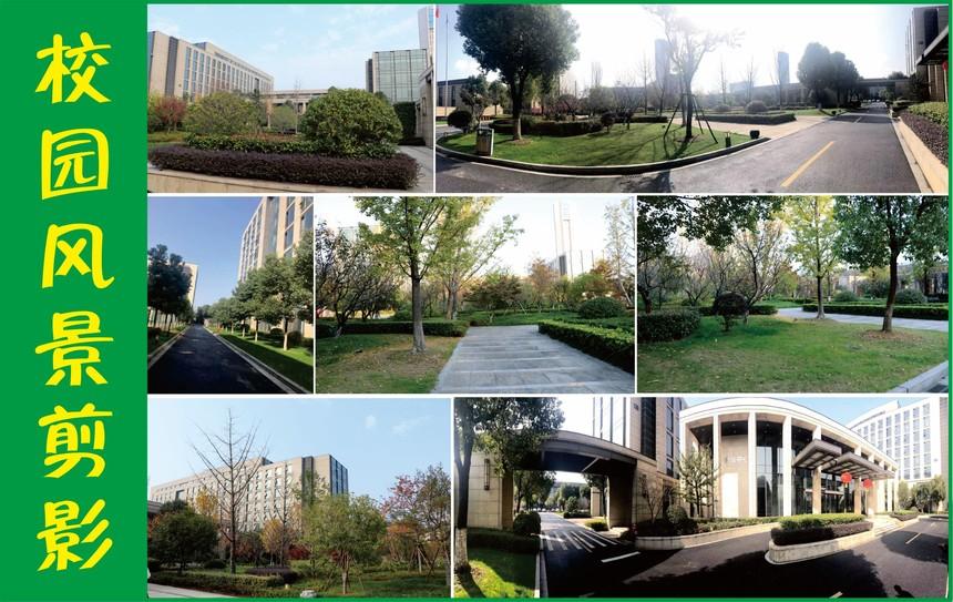 校园风景4M.jpg