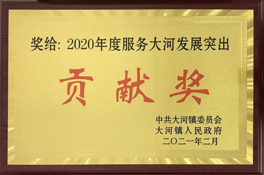 2020年度服务大河发展突出贡献奖