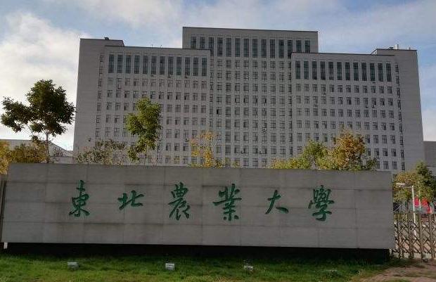 东北农业大学.png