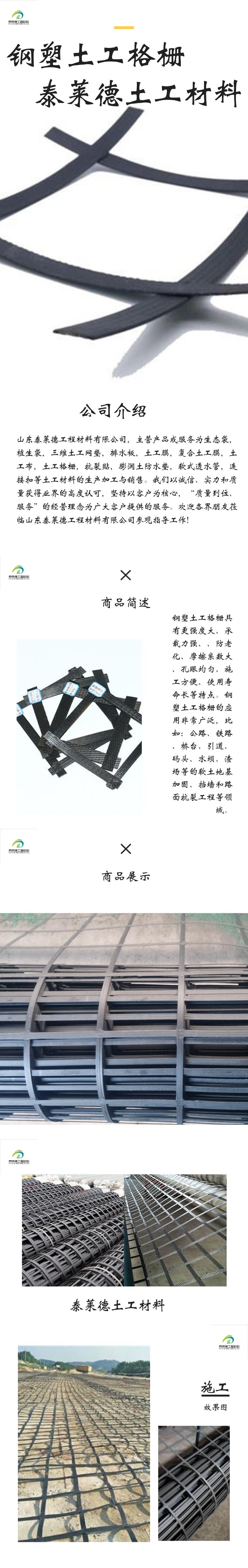 钢塑土工格栅1818@凡科快图.png