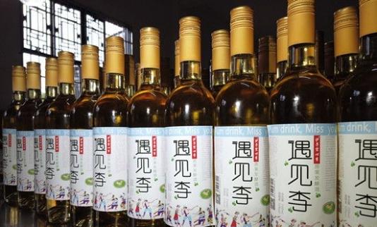 """原生态果子酒——""""遇见李""""沙子空心李子酒将亮相第十届中国(贵州)国际酒类博览会 贵州酒类博览会"""