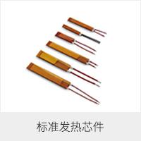 标准发热芯件2.png