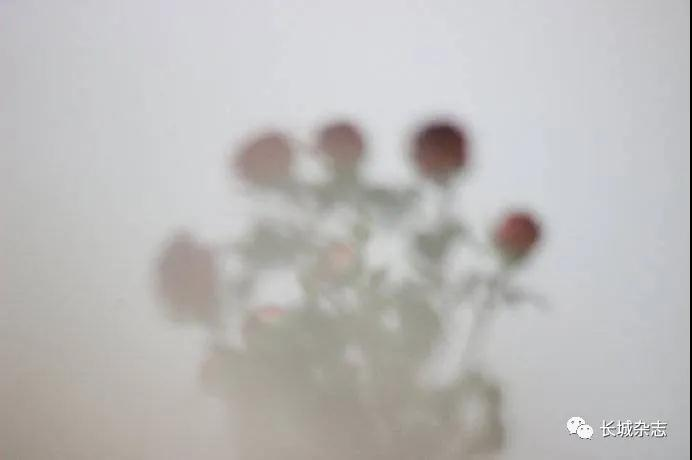 微信圖片_20210419103934.jpg