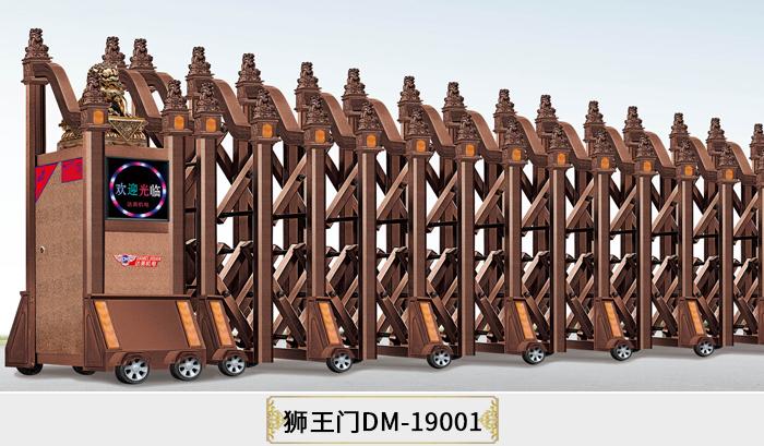 DM-19001.jpg