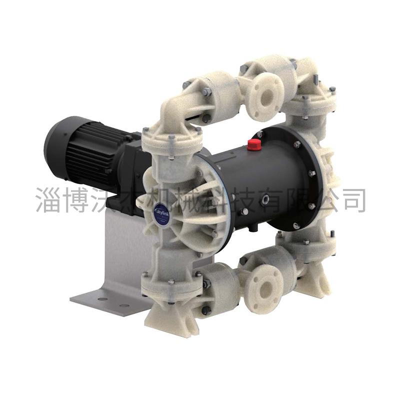 塑料電動隔膜泵2.jpg